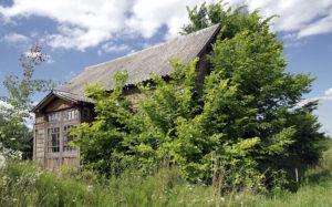 En eiendom som står tom over en lengre periode gror fort igjen