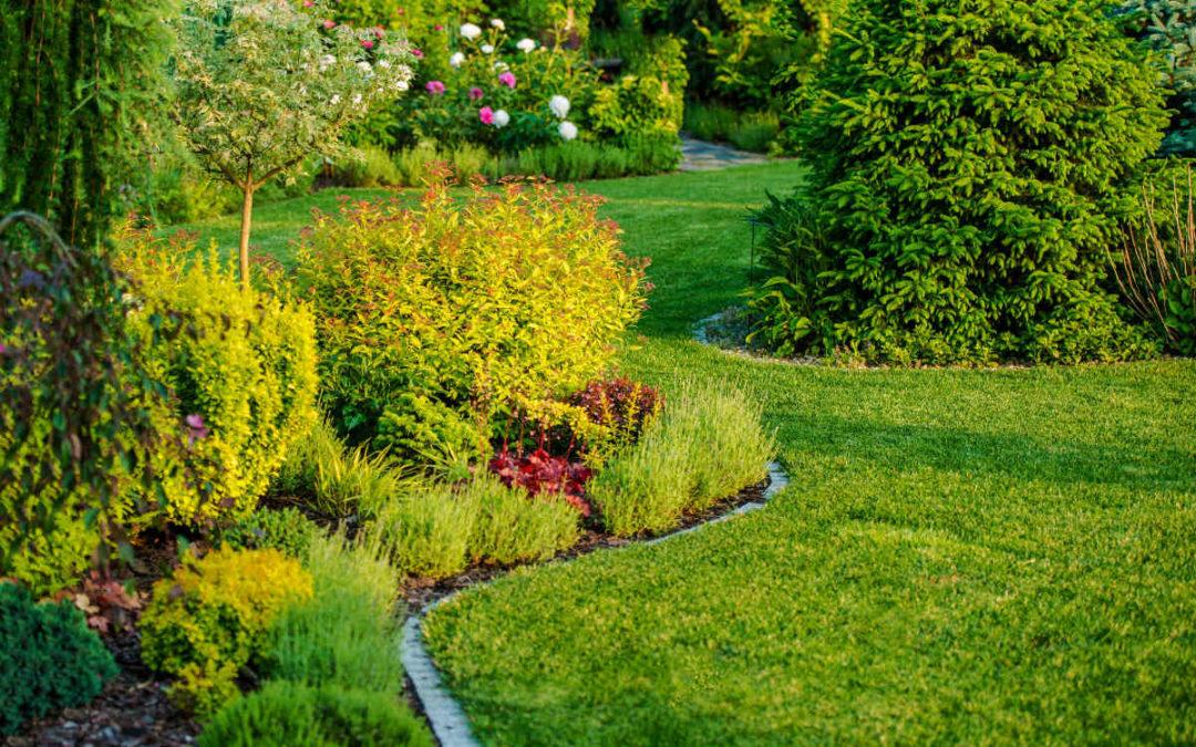 Tre tips for å gjøre hagen vakker